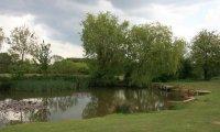 Small lake ambiance