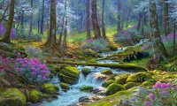 Rippling stream in a forest