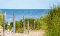 Windy Beach Day
