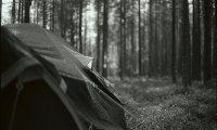 Morning Rain at Camp