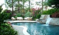 Backyard Pool with Friends