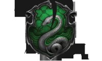 Slytherin Studying