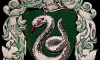 Slytherin Common Room in the Dungeons
