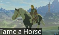 all i do on breath of the wild is ride as many horses as possible
