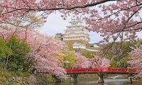 Feudal japan countryside