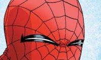 Peter Parker's Sun Room