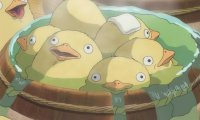 Imagine relaxing in a giant hot tub with some fluffy ducklings.
