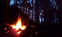 Witcher Campfire