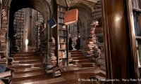 Hogwarts' Library - preparing for O.W.L.-s