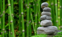 Join a spiritual retreat in a Japanese garden.