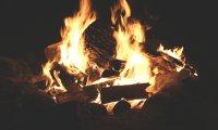 Bonfire with Friends