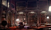 Relaxed Cozy Library