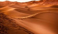Arrakis - Dune - Desert Planet