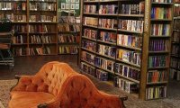 a cozy little book shop