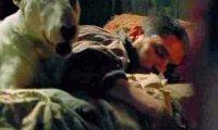 Eddie Brock sleeps while you work