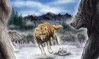 Battle against wolves or wargs