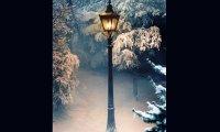 Walking in the snow in Narnia