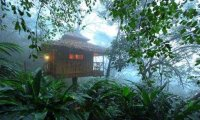Tree house in deep forest with bunch of windchimes