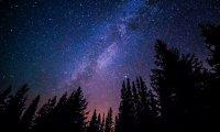 Stargazing in a meadow