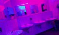 In the nightclub WC