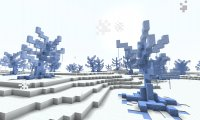Freezing Forest Biome