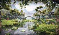 Soothing Japanese Garden