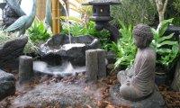Japanese Garden Tranquility