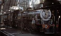 The Rooks' Train
