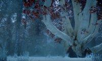 Winterfell Godswood with Sansa