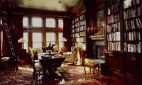 Reading in the cozy Hufflepuff common room on a stormy autumn day