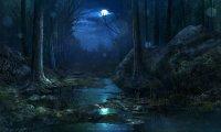 Pantano noche / día