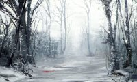 A deep forest, during winter...
