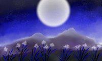 Moon Chimes