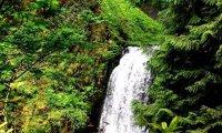 Waterfall Sanctuary