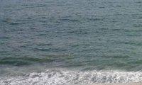 Relaxing beach sounds