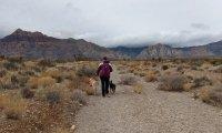 Relaxing Desert Hike