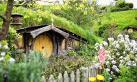 The Shire and its Hobbits