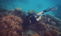 Scuba Diving with Nancy