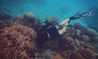 Scuba Diving with Nancy