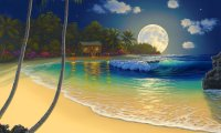 tropical island at night