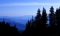 Breezy Mountain Camp