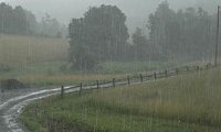 Rain-Subtle Ambient(noThunder)