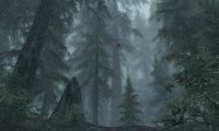 Skyrim: Falkreath, Daytime