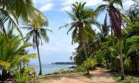 Tropical beach chill