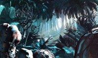 Night in the Zikus Rainforest