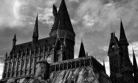 Hogwarts Castle Study Room