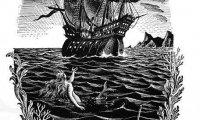a mermaid takes your ship adrift