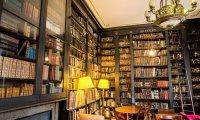 Quiet Reading Room with Host Cat