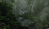 Jungles of Gobindi