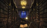 Studying for finals at the Hogwarts Library